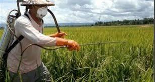 خرید عمده سموم کشاورزی