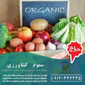 قیمت محصولات ارگانیک