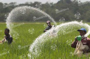 سم کشاورزی در کرج