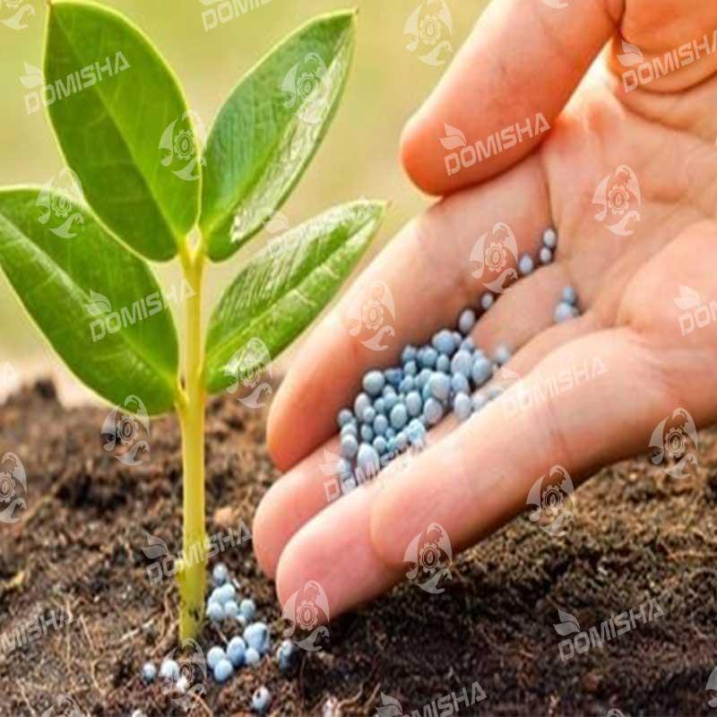 بذر کشاورزی آنلاین