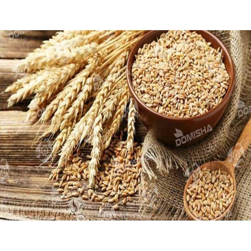 فروش عمده سموم کشاورزی